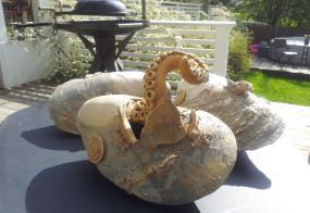 Brutal mussla